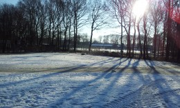 Sunshine after snowfall is also as alluring as snowfall itself is.