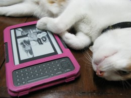 Reading manga on my Kindle with my cat. :)