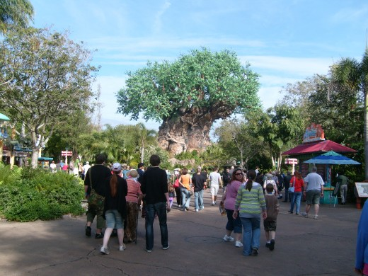 The Tree of Life is at the center of The Animal Kingdom of Walt Disney World
