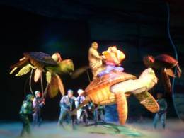 Nemo's Dad and Dorrie hitch a ride with the turtles to get to Nemo