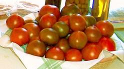 How to make homemade tomato fertilizer?