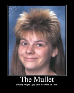 Banning All Mullets