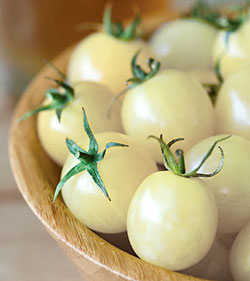 Cherry tomatoes in its white color. (Italian Ice)