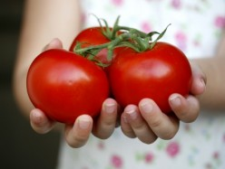 A Guide to Teaching Children Nutrition and Healthy Food Choices