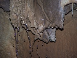 Aillwee Cave Stalactites