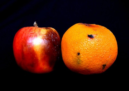 While comparing Scientology vs. Christian Science is akin to comparing apples and oranges, one is no less likely to be rotten on the inside than the other.
