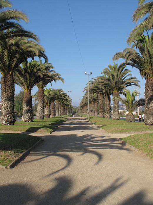 View of La Serena, Chile