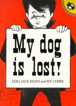 My Dog is Lost!
