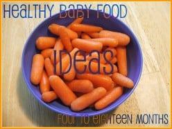 Baby Food Ideas - 4-18 months