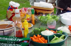 Popular Summer Activity - Picnic - Food, Fun, Family, and Friends