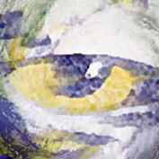 jvandewalker profile image