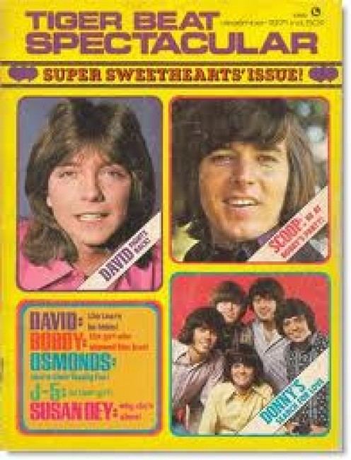 I WONDER IF BOBBY SHERMAN IN 2012, RECALLS HIS TIME ON TIGER BEAT MAGAZINE COVERS?