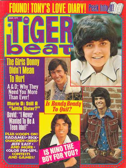 IF TIGER BEAT HAD JUST RAN OUR PHOTO AND STORY, I WOULDN'T BE SITTING HERE NOW--BANGING OUT A STORY OF LOST LOVE AND SUCCESS.