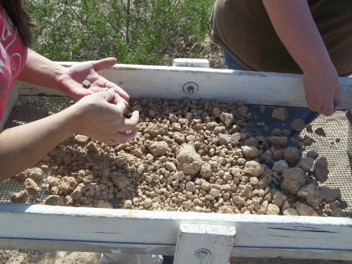 Two members of the Southwest Archaeology Team sort thru the matrix remaining after sifting was finishing. One holds in her left hand small artifacts which have been recovered using this process. Photo from the 2011 Annual Open House at Mesa Grande, h