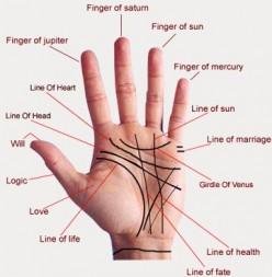 Making Sense of Palmistry.