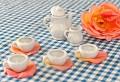 Indoor picnic or Tea party