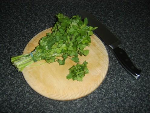 Fresh coriander leaf/cilantro