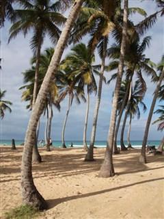 Macao Beach, DR