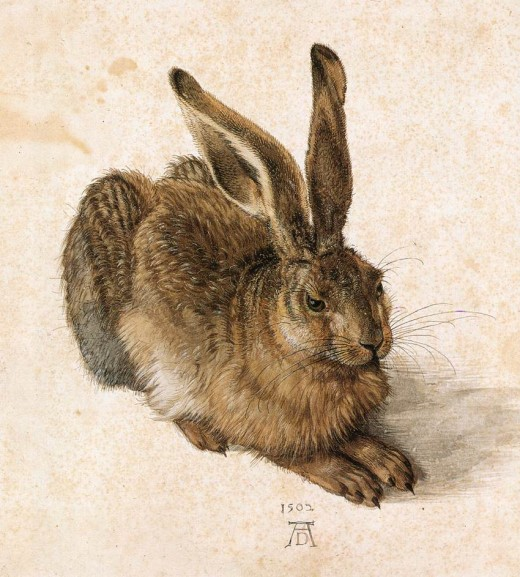 Albrecht Durer's famous drawing of a hare