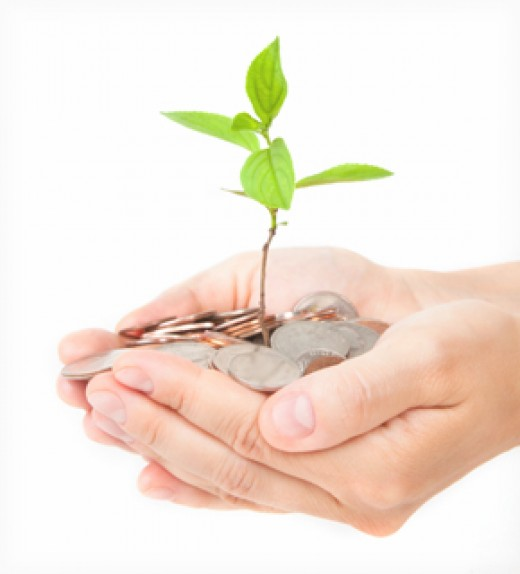 Planting your money into savings will help your money grow