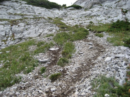Yes. That is a trail...in the Rocky Mountains in Alberta, Canada.