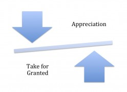 Take for granted or show some appreciation