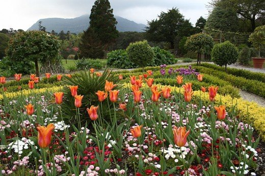 Flower Garden at Muckross House - Killarney, Ireland