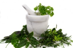 Herbs Help Heal the Body