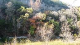 Beautiful San Antonio Texas