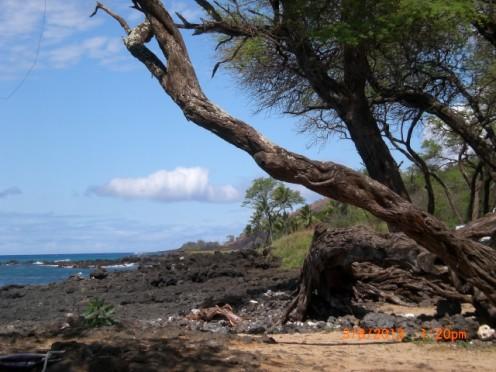 Makena Beach 2