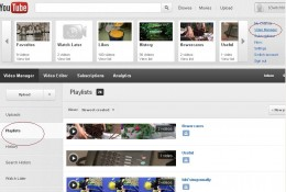Viewing Youtube playlist.