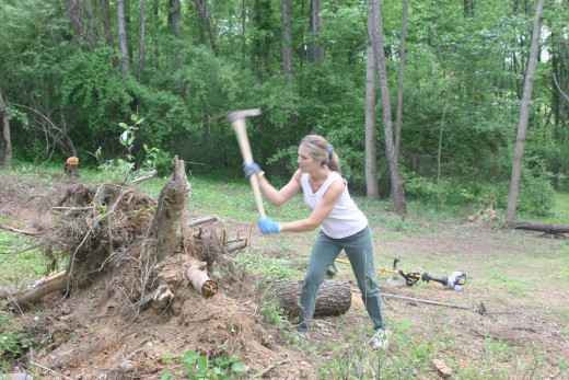 Trying to chop up a tree stump