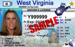Federal driver's license 2017
