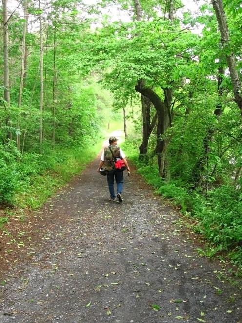 Public trails.