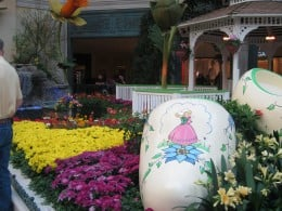 Such pretty and BIG wooden shoes decorate the Conservatory along with the gorgeous flowers.