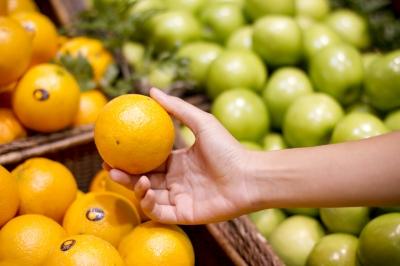 Vitamin C in Citrus Fruits