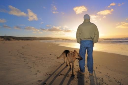 Walk the Dog. Photogaphy by Federico Stevanin. http://www.freedigitalphotos.net