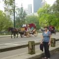 Central Park: Size Does Matter!