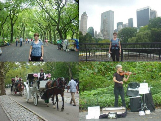 Clockwise: The Mall / Wollman Rink / Violinist on the Mall / Horse-drawn Carriage Ride