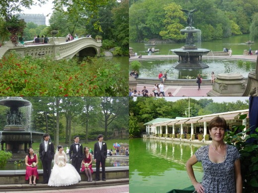Clockwise: Bow Bridge / Bethesda Terrace / Loeb Boathouse / Wedding in front of Angels of the Waters Fountain
