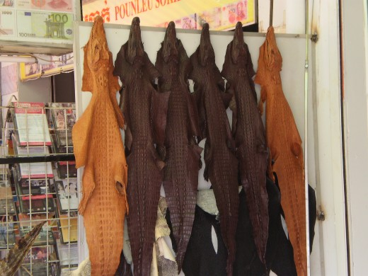 Crocodile skin hanging outside a leather shop at the Central Market.