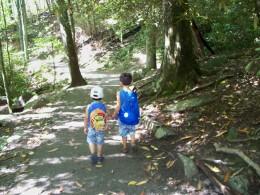 Hiking to Laurel Falls