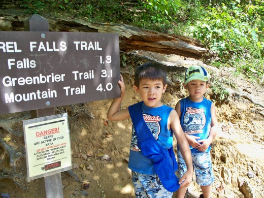 Trailhead for Laurel Falls