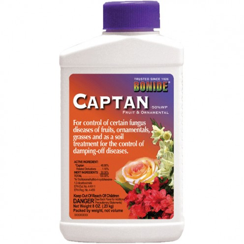 This is a great fungicide for strawberries, and it is sold everywhere.  Online, you can buy it at Amazon.com.