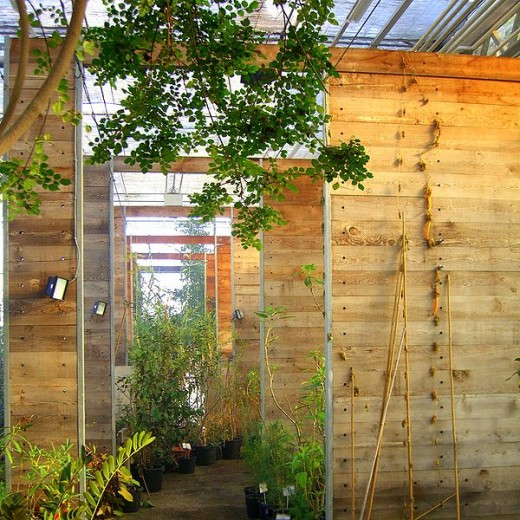 Indoor gardens thrive in greenhouse-type settings.