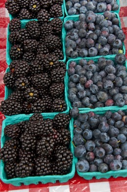 Pint Rows of Blueberries and Black Hull Berries
