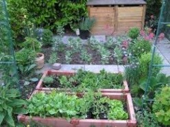 An organised garden will help you know where you planted each fruit or vegetable for the season