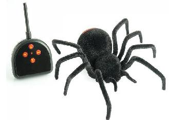 remote control spider from animal planet