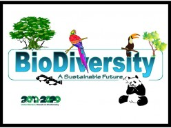 The United Nations Decade on Biodiversity