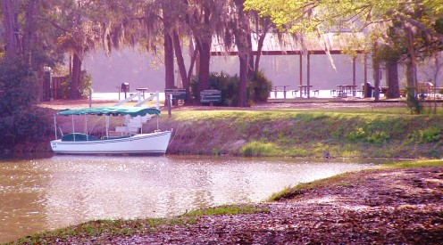 View of Alligator Tour Boat in Lake Thomas. The Picnic Pavillion and Lake Joe can be seen in the background.